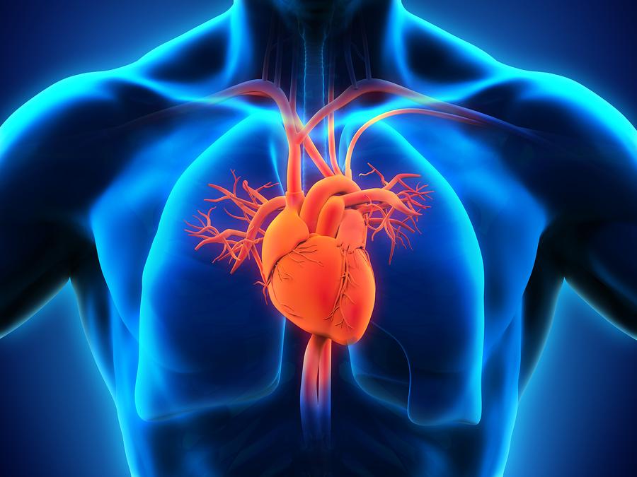 Cardiology Client